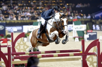 ULYSS FINISHES THE 2017 SEASON PLACED IN THE GRAND PRIX 1.45 m AT THE MECHELEN SHOWJUMPING